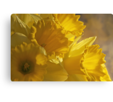 Big, Big Yellow Canvas Print