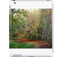 Natures Paintbrush iPad Case/Skin