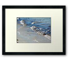 Seagull Beach Framed Print