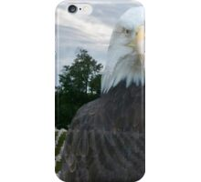 Honor Our Veterans on 11/11/14 iPhone Case/Skin