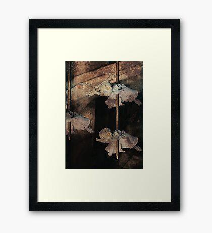 Fairy Carnage Framed Print