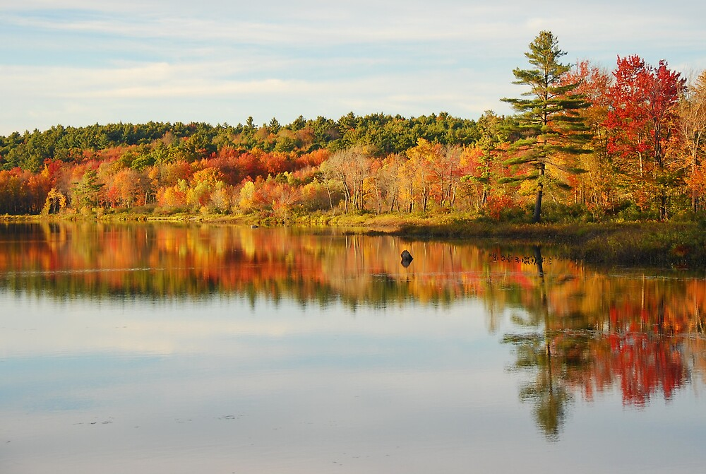 McDowell Lake, New Hampshire, USA by chrisg