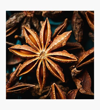 Anise star spice extreme close-up Photographic Print