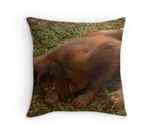 Crouching Ape, Hidden Assets Throw Pillow