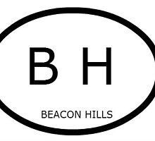 Beacon Hills Show your pride for your favorite fictional town by lovefromlahey
