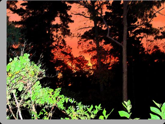 Sumi-e Sunset by Sarah Bentvelzen