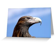 Eagle Eye 3 Greeting Card