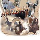 Arizona Wildlife by Sandy O'Toole