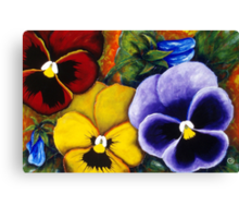5 Pansies Canvas Print