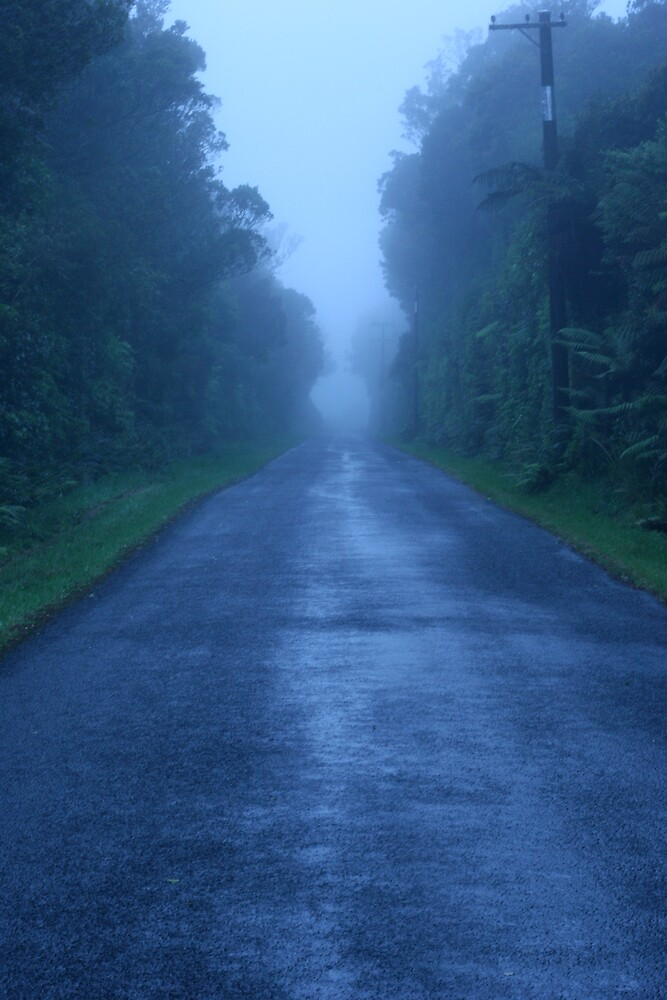 Into the mist by Spokeydokey