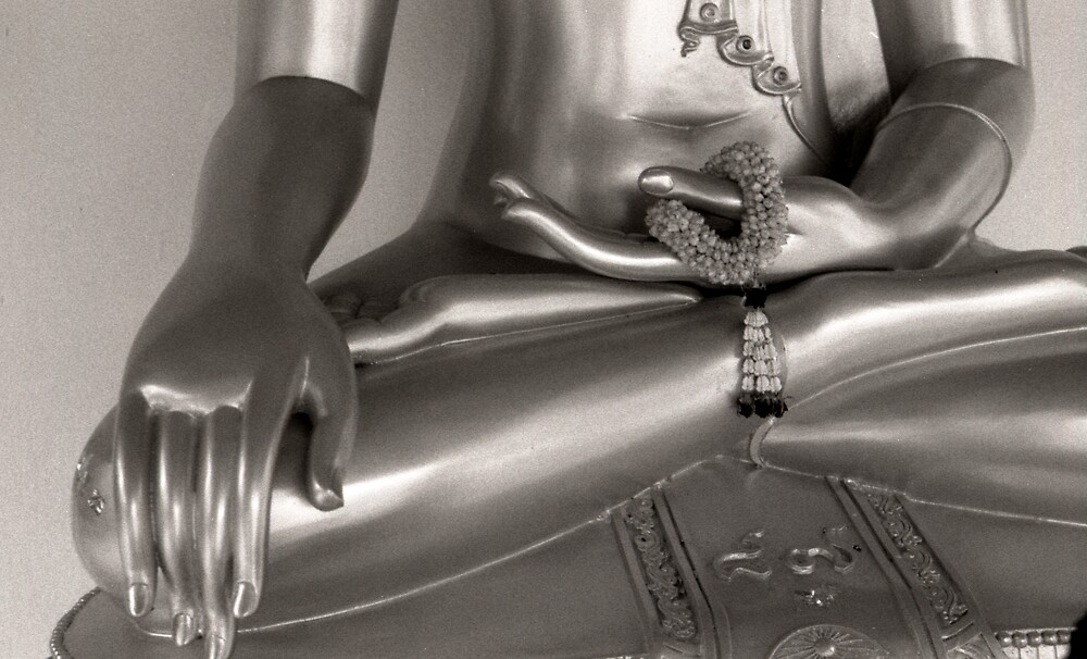 Buddha hands by Heidi Wernicke