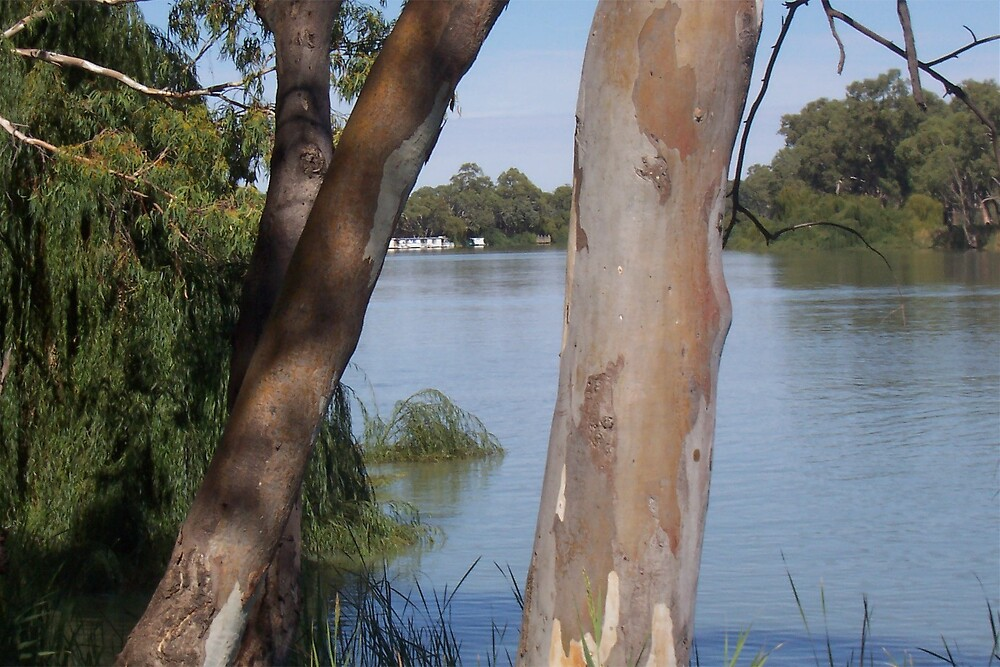 River Murray by Princessbren2006