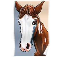Willy the Horse Poster