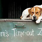 Tom's Time-Out Zone 2 by Alexander Gitlits