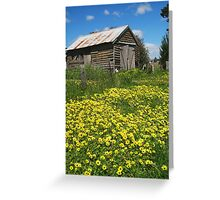 Yellow Daisies Snake Valley Greeting Card