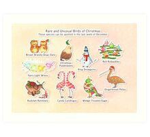 Rare and Unusual Birds of Christmas Art Print
