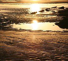 Sunrise at Torquay by Vanessa Semmens