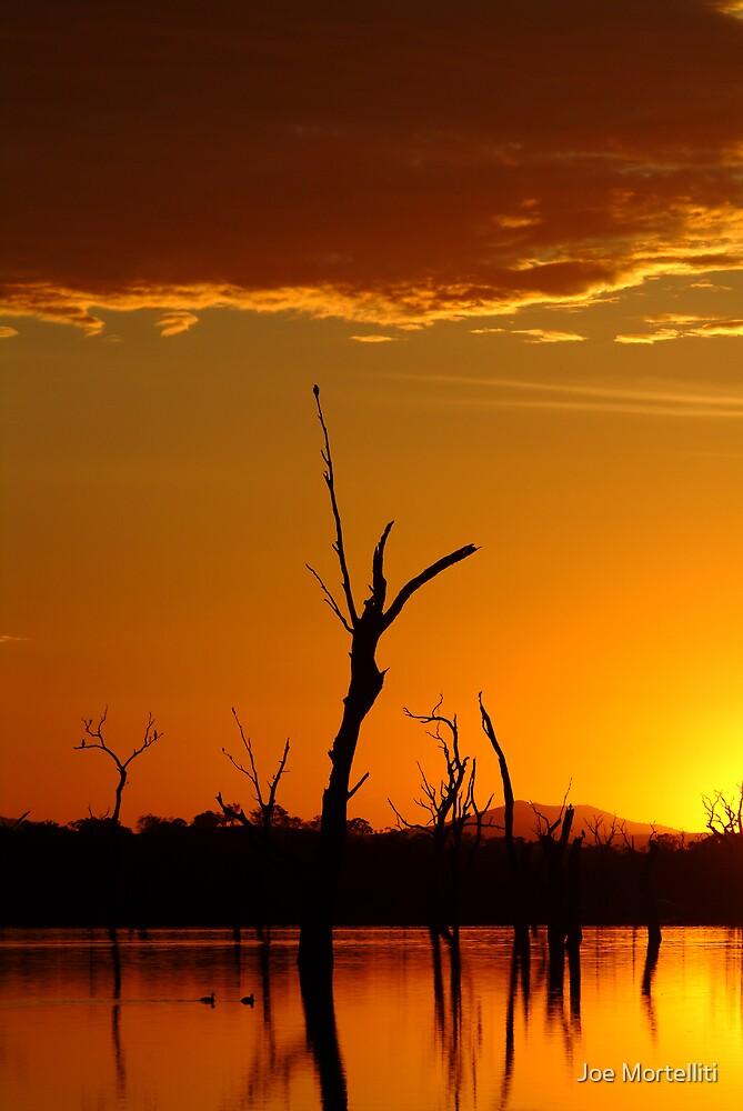 Sunrise Gold, Lake Fyans Grampians  by Joe Mortelliti