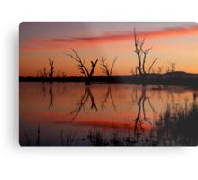 Lake Fyans Grampians Metal Print
