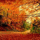 A raucous fall by MarianBendeth