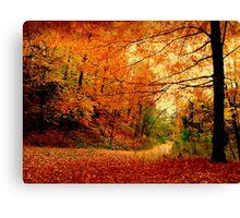 A raucous fall Canvas Print