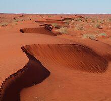 Simpson Desert,N.T. by Joe Mortelliti