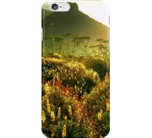 Paddy's Nut and flowering scoparia iPhone Case/Skin