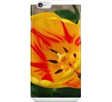 Yellow and Red Tulip iPhone Case/Skin