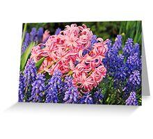 A Mound of Hyacinths Greeting Card