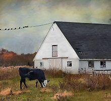 Barnyard Bliss by Robin-Lee