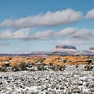 Canyonlands by Mike Herdering