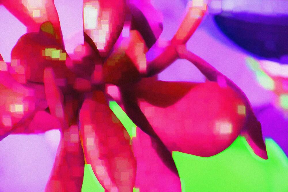 Succulent pink by JenStocks