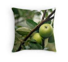 Apples in the Orchard Throw Pillow