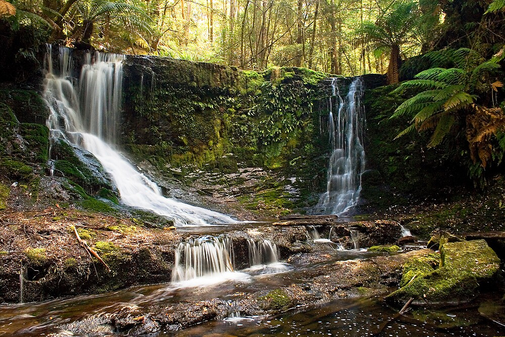 Horseshoe Falls by Heath Carney