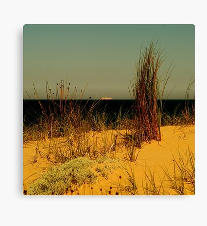 the distance between us Canvas Print
