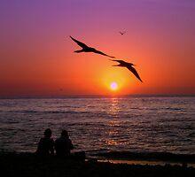 Sunset pairs by jenitae