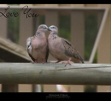 Pigeon Doves by Simone C