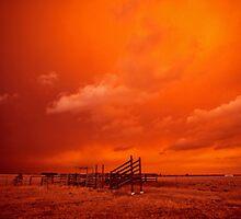 bushfire sky - Gippsland 2006 by Tony Middleton