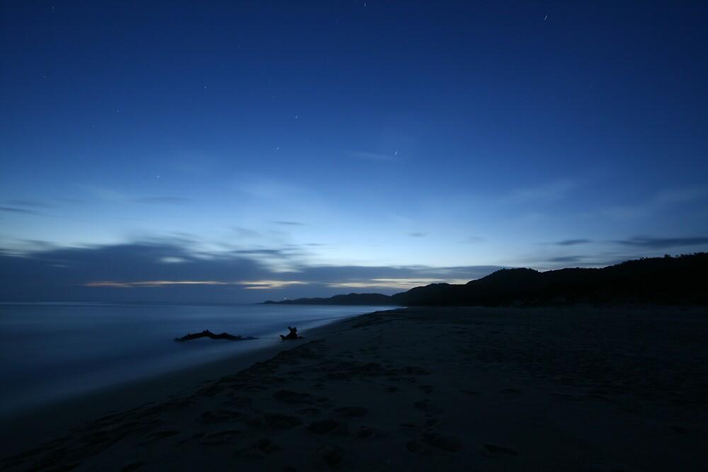Night Sea by Chris Jenkins