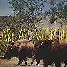 Buffalo Wild by Leah Flores