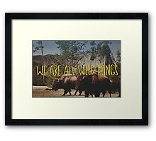 Buffalo Wild Framed Print