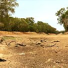 Tha Dry Darling River at Louth by Mark Ingram Photography
