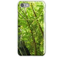 Up Into the Trees Photo iPhone Case/Skin