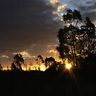 AN AUSTRALIAN SUNSET 2 by dopey