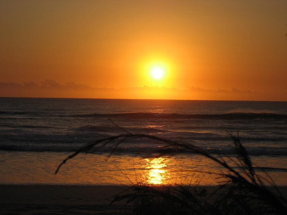 Sunrise Surfers Paradise Beach with fern by Rohana