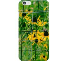 Golden Afternoons  iPhone Case/Skin