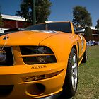 Yellow Mustang by MichaelJP