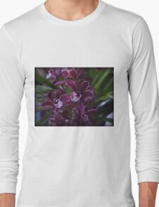 Miniature Cymbidium Orchid ( 6 ) Long Sleeve T-Shirt