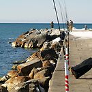 Not Bitin' at the Breakwall by BarbL