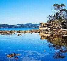 Tasman Reflections by Heath Carney